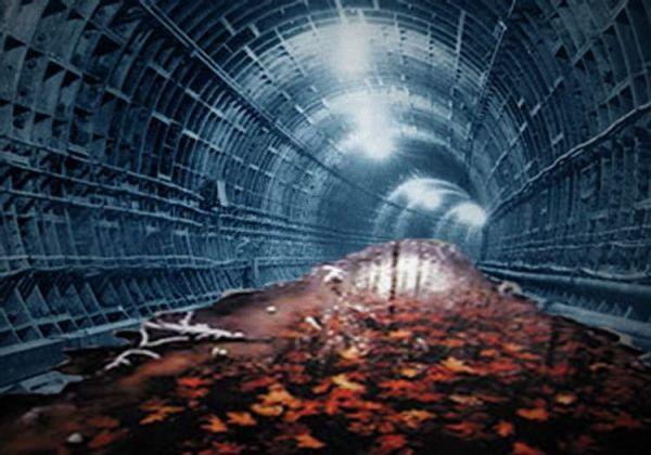 !riel: Tunel